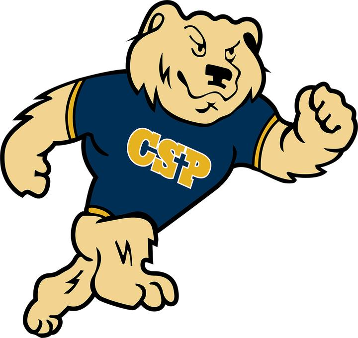 Image result for concordia st paul logo